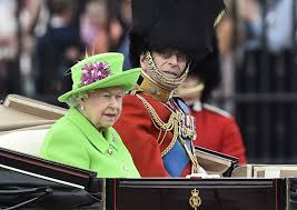 The Queen's 'Green Screen' Outfit Sparks A Hilarious Internet Reaction    Bored Panda